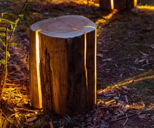 Bring Nature Into Your Home – The Cracked Log Lamp