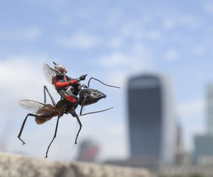 Ant-Man Installations by Slinkachu for Marvel