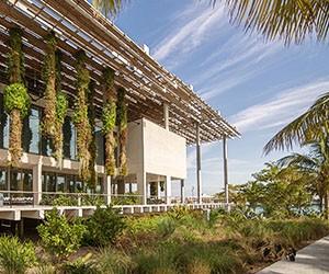 4 of Miami's Hot New Design Destinations
