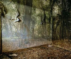 'Realm' by Carolyn Lefley