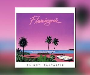 "Flamingosis - ""Flight Fantastic"" // Full Stream"