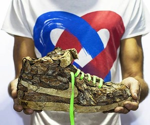 """Just Grow It ! – Les Sneakers Végétales"""