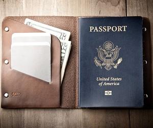 Mr. Lentz Passport Wallet