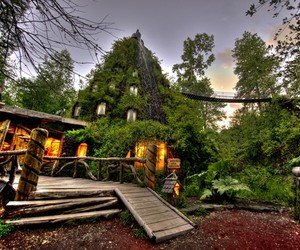 Montana Magica Lodge