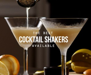 The Best Cocktail Shakers