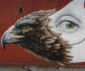 """Strange Bird"" – New Mural by Street Artist Lonac"