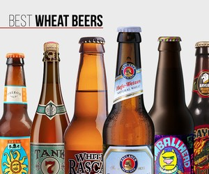 Best Wheat Beers
