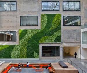 AirBnB's New San Francisco Headquarters