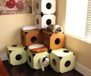 Stacking Modular Cat Homes