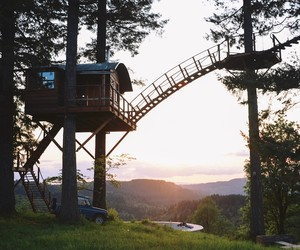 The Cinder Cone – Building a Tree House