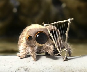 Lucas, the animated spider, plays the harp