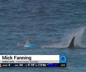 Mick Fanning Attacked by Shark at J-Bay