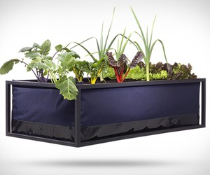Noocity Growbed