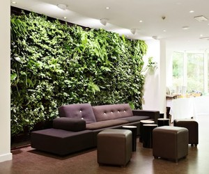 Bring Nature Inside Your Home