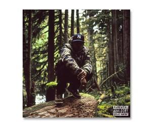 Listen: Remy Banks - Higher Mixtape