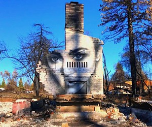 Forest fires: dust to street art - ashes to ashes