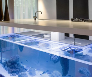 Mesmerizing Kitchen Island Aquarium
